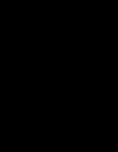 RVB Logo noir transparent